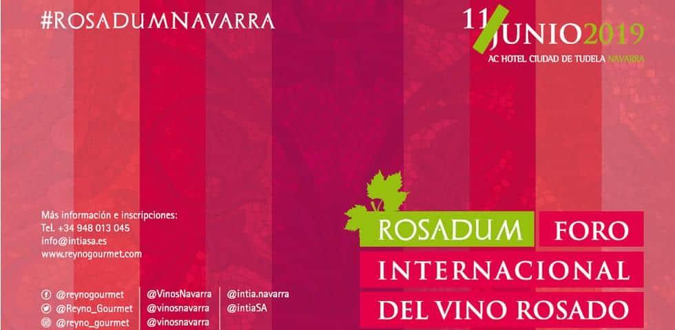 Tudela, sede del I Foro Internacional del Vino Rosado